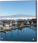 Homer Alaska Fishing Port Acrylic Print