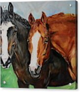 Horses In Oil Paint Acrylic Print