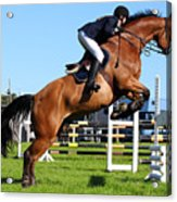 Horses Races Acrylic Print