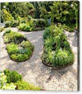 If Gulliver Had A Herb Garden Acrylic Print