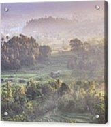 Indonesia, Bali, Forest Landscape Acrylic Print