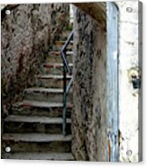 Into The Fort Acrylic Print
