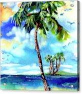 Island Solitude Palm Tree And Sunny Beach Acrylic Print