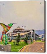 Itchimbia Park Acrylic Print