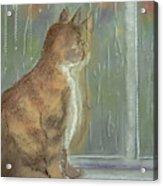 It's Raining Outside Acrylic Print