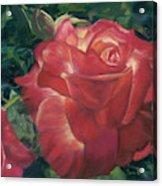 Jenny Rebecca Acrylic Print