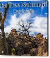 Joshua Tree National Park, California Box Canyon 02 Acrylic Print