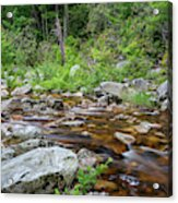 June Morning At The Peterskill Acrylic Print
