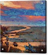 Kalaloch Creek 54 Acrylic Print