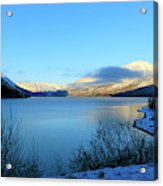 Kenai Lake Primrose Kenai Peninsula Alaska Acrylic Print