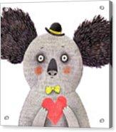Koala With Heart. Watercolor And Pencil Acrylic Print