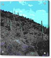 Lake Pleasant Az 042a Acrylic Print