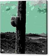 Lake Pleasant Az 044a Acrylic Print