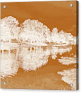 Lake Reflections In Brown Acrylic Print