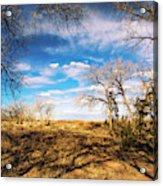 Land Of Enchantment Acrylic Print
