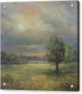 Landscape Of A Meadow With Sun And Trees Acrylic Print