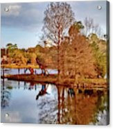 Langan Park Island Reflections Acrylic Print