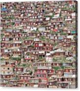 Larung Gar Five Sciences Buddhist Acrylic Print