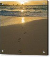 Leading To The Light Coastal Sunrise Acrylic Print