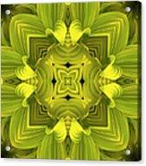 Leafy Mandala Acrylic Print