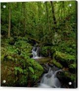 Lee Falls Cascades Acrylic Print