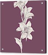 Lily Purple Flower Acrylic Print