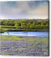 Mach Road Blubonnet Panorama In Evening Light Acrylic Print
