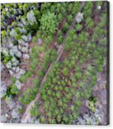Manistee River Aerial Acrylic Print