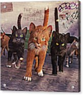 March Of The Mau Acrylic Print