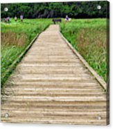 Boardwalk At Mccormack's Beach Provincial Park Acrylic Print