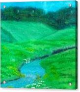 Meadow Beauty Acrylic Print