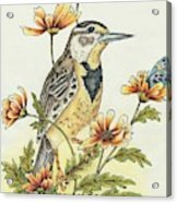Meadow Song Acrylic Print