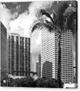 Miami Downtown 071903 Acrylic Print