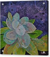 Midnight Magnolia I Acrylic Print
