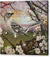 Mockingbird Sunset Acrylic Print