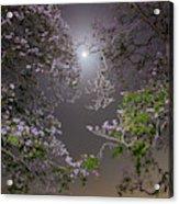 Moonlight And Magic Acrylic Print