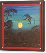 Moonlight Baboon Acrylic Print