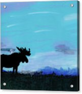 Moose - At - Sunset Acrylic Print