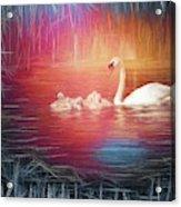 Morning Bath 2 Acrylic Print