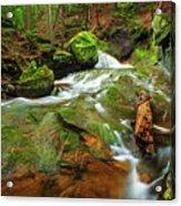 Mossy Glen Rollers Acrylic Print