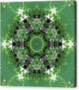 Mossy Green Acrylic Print