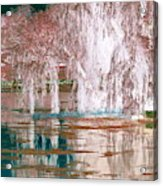 Mother Willow Altered Infrared Acrylic Print