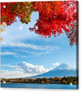Mt. Fuji In Autumn Acrylic Print