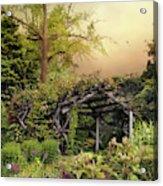 Mystical Arbor Acrylic Print