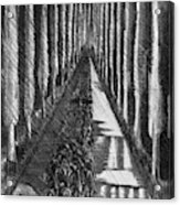 Men Marching At Night, 1918 Acrylic Print