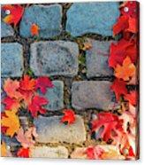 Natural Autumn Leaf Background  Acrylic Print