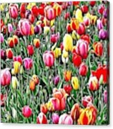 Naturalness And Flowers 55 Acrylic Print