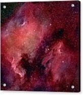 Nebulae In Cygnus Acrylic Print