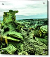 New Mexico Raw Acrylic Print