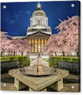 Night At The Capitol Acrylic Print